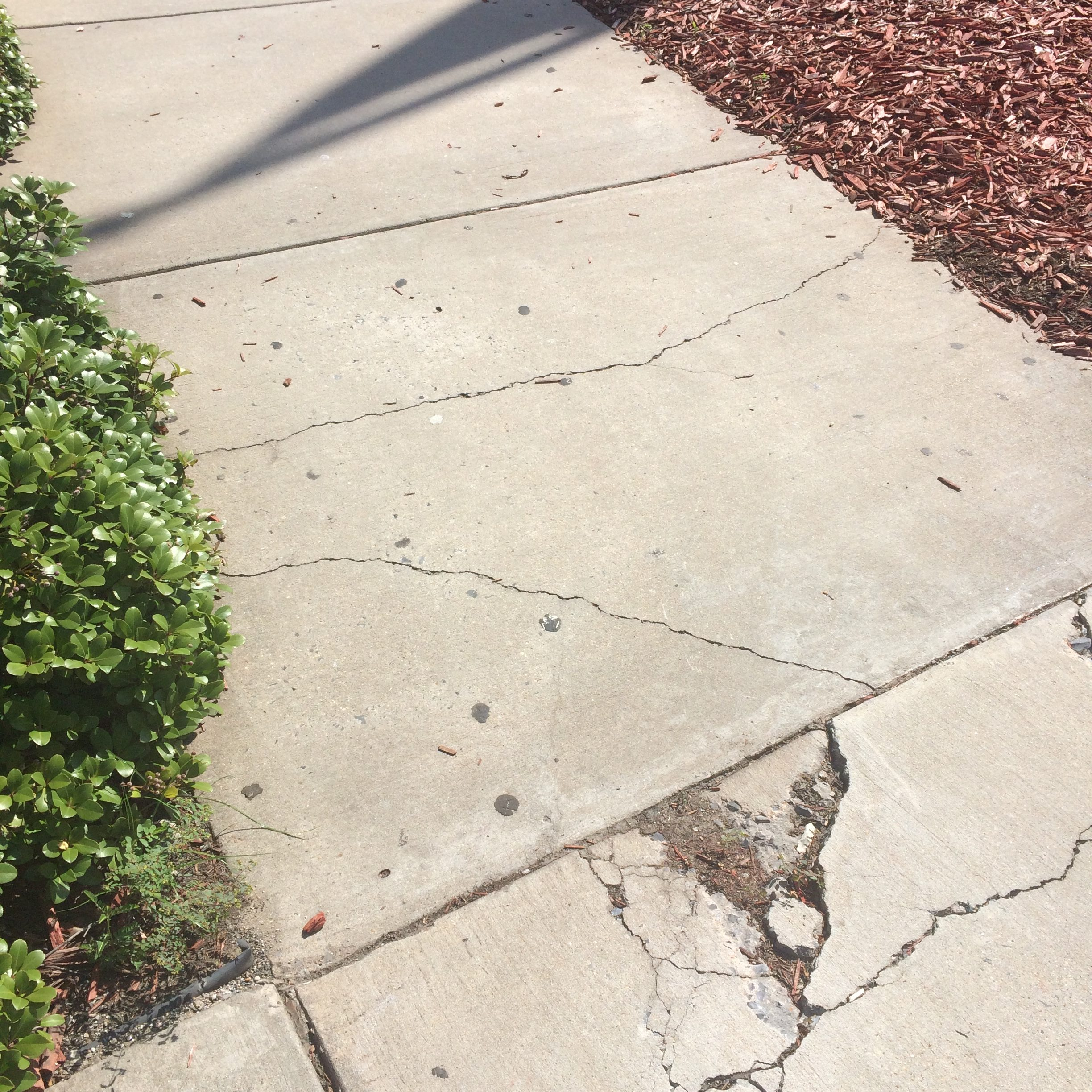 FedEx-forum-damaged-concrete-sidewalk-2-e1537086808690